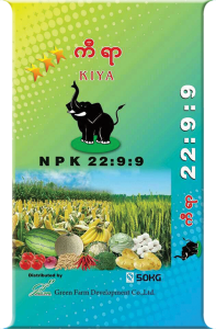 KIYA-22--9--9